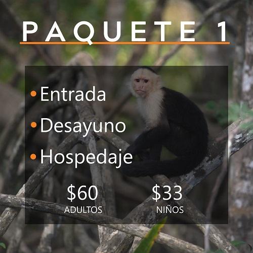PAQUETE 1