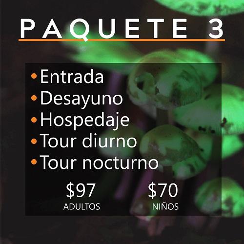 PAQUETE 3