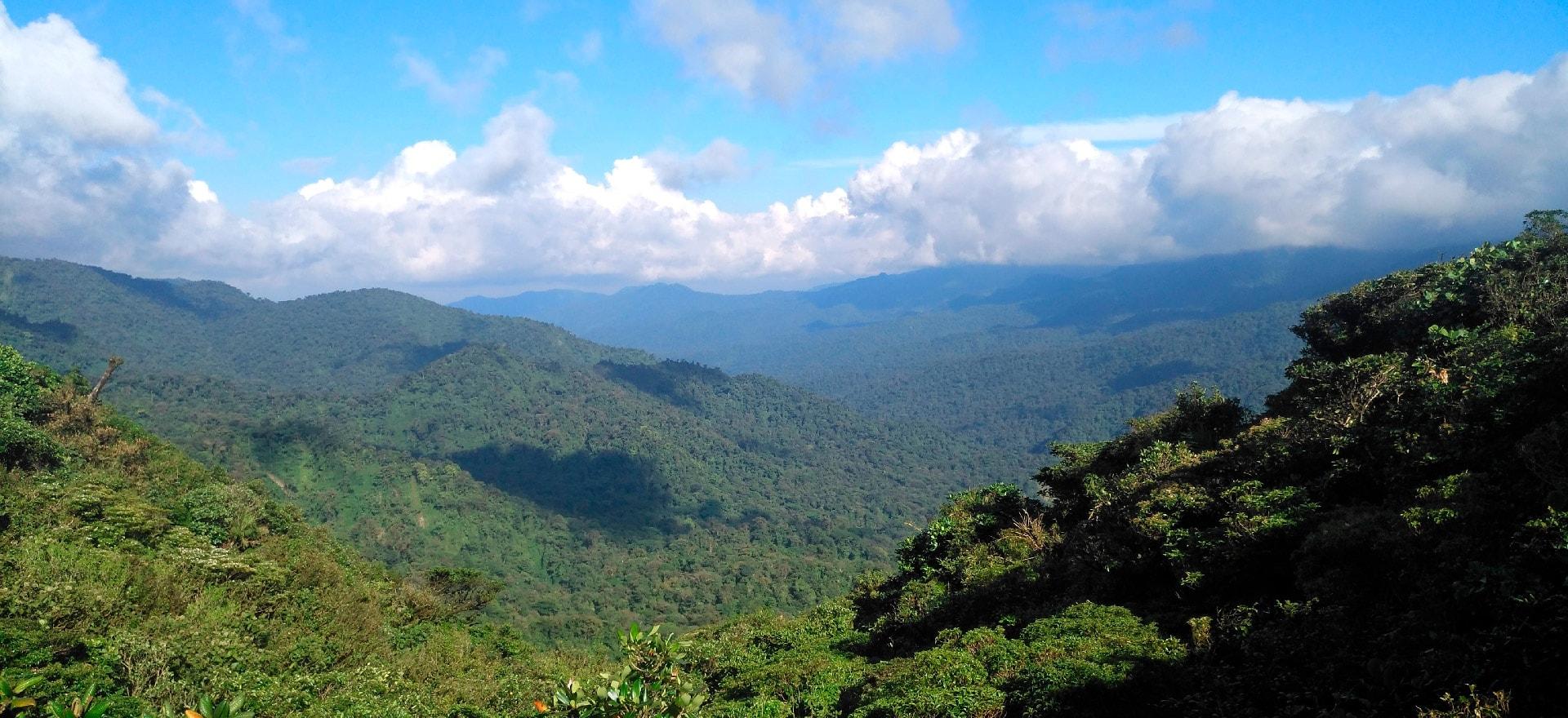 01-cursos-biologia-monteverde-centro-cientifico-tropical-min2-min