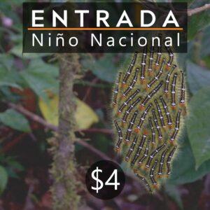 ENTRADA NIÑO NACIONAL