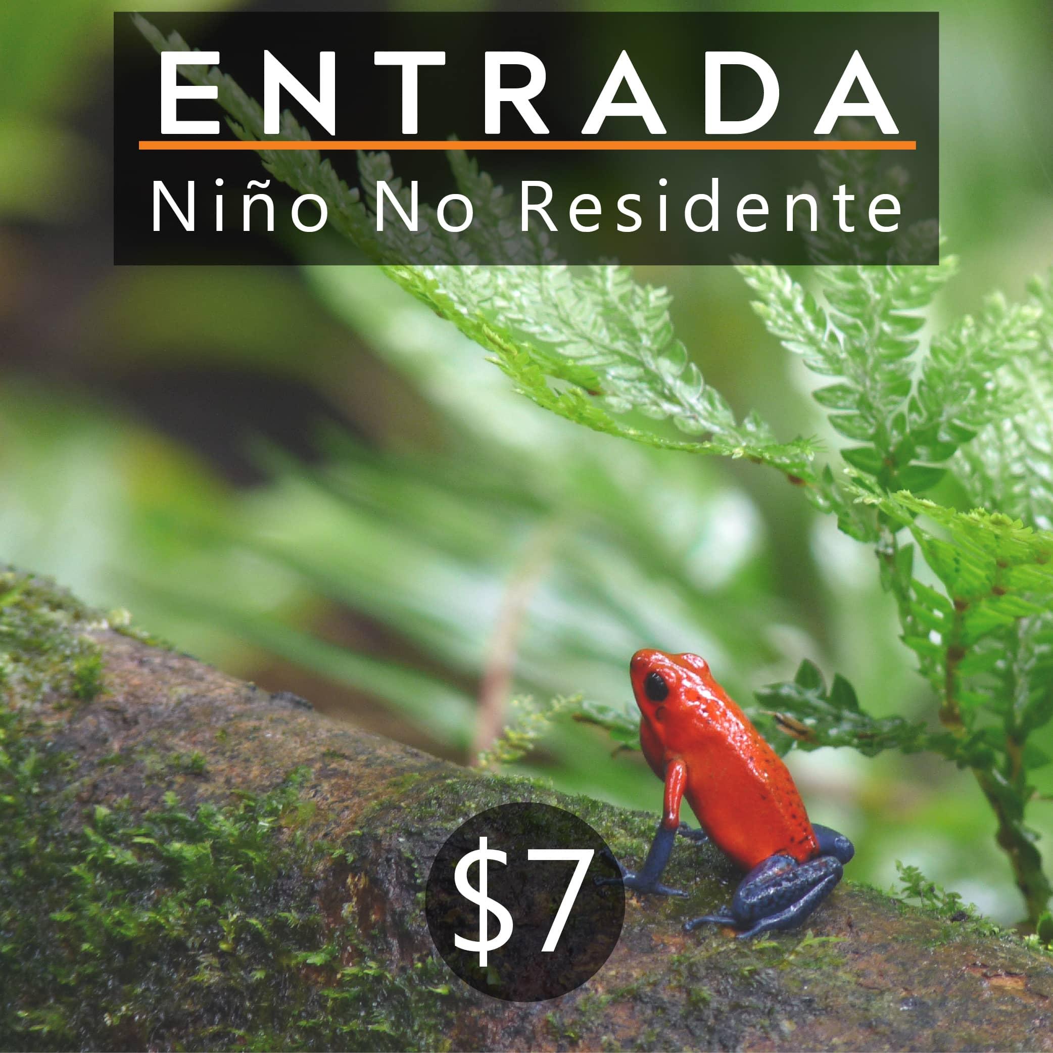 ENTRADA NIÑO NO RESIDENTE